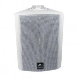 AI-Sonic Paire de OD-52W Blanc (2 voies, 110 WRMS, 4 Ohms)